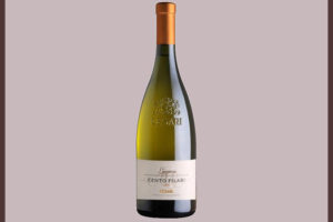 Отзыв о вине Centro Filari
