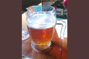 Отзыв о пиве Velkopopovicky Kozel svetle