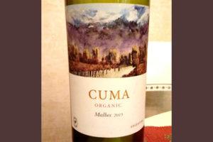 Отзыв о вине Cuma organic malbec 2015