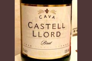 Отзыв об игристом вине Castrell Llord brut 2016