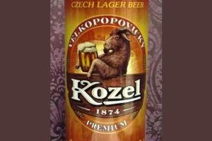 Отзыв о пиве Kozel premium