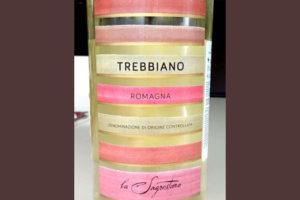 Отзыв о вине Trebbiano Romagna La Sagrestana 2016