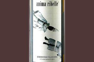 Отзыв о вине Anima Ribelle 2011