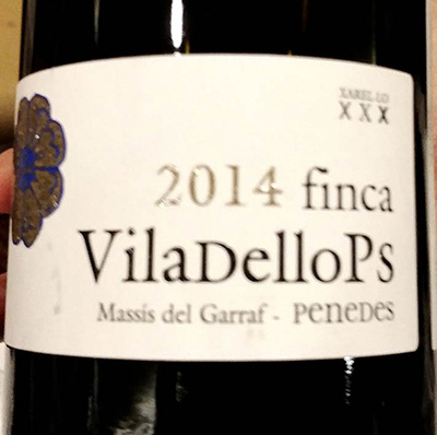Отзыв о вине Finca VilaDelloPs Massis del Garraf 2014