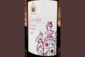 Отзыв о вине Ca de Io rosato Vignali Roccamora 2016