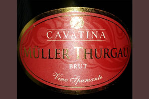 Отзыв об игристом вине Cavatina Muller Thurgau brut 2017