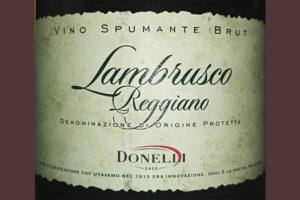 Отзыв об игристом вине Donelli Lambrusco Reggiano brut 2014