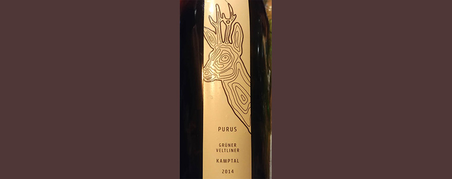 Отзыв о вине Kamptal PURUS Gruner Veltliner reserve 2014