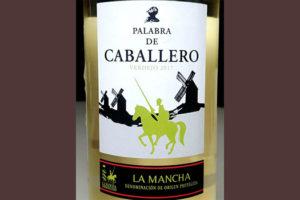 Отзыв о вине Palabra de Caballero verdejo 2017