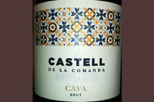 Отзыв об игристом вине Castell de la Camanda Cava brut 2016