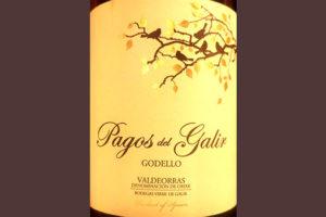 Отзыв о вине Pagos del Galir Godello 2017