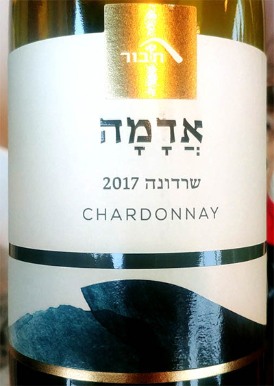 Отзыв о вине Mt. Tabor Adama Chardonnay Galilee 2017