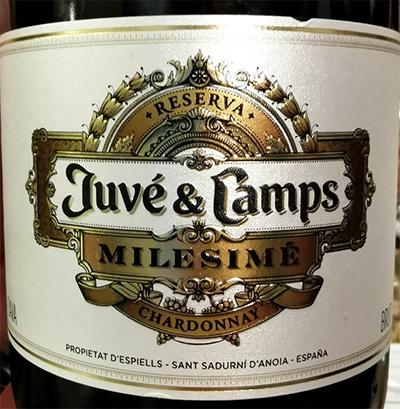 Отзыв об игристом вине Juve & Camps Milesime Chardonnay Reserva Cava brut 2016
