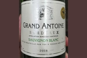 Grand Antoine Sauvignon Blanc Bordeaux 2018 белое вино отзыв