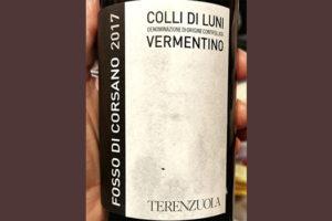 Colli di Luni Vermentino Fosso di Corsano Terenzuola 2017 белое вино отзыв
