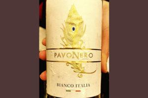 Geografico Pavo Nero bianco Italia 2019 Отзыв белое вино