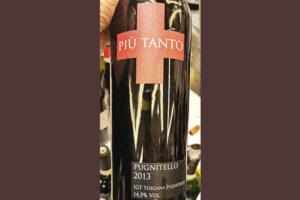 Tenuta Tondaia Piu Tanto Pugnitello Toscana 2013 Красное вино отзыв