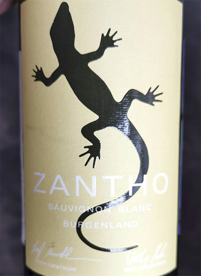 Zantho Sauvignon Blanc Burgenland 2019 Отзыв белое вино