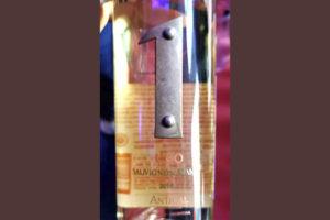 Antigal Uno 1 Sauvignon Blanc Mendosa Argentina 2019
