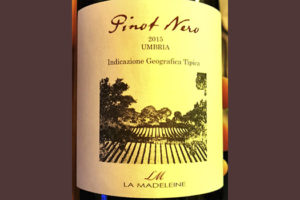 La Madeleine Pinot Nero Umbria 2015 Красное вино отзыв