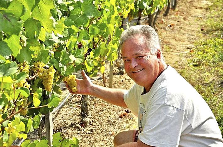 Алексей Акчурин на винограднике