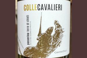 Cantina Tollo Colle Cavalieri Passerina Terre di Chieti 2019 Белое вино отзыв