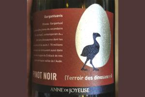 Anne de Joyeuse Pinot Noir Gargantuavis Terroir des Dinosaures 2018 Красное сухое вино отзыв