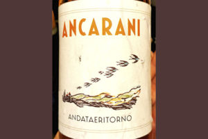 Ancarani Andataeritorno bio bianco 2019 Белое сухое вино отзыв