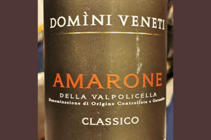 Domini Veneti Amarone della Valpolicella Classico 2016 Красное сухое вино отзыв