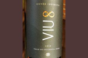 VIU 8 Cuvee Infinito Valle de Colchagua Chile 2016 Красное сухое вино отзыв