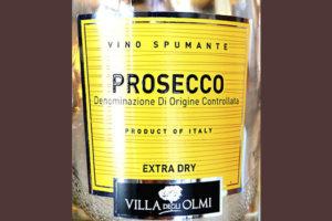 Villa degli Olmi Prosecco Vino Spumante extra dry 2019 Белое сухое вино отзыв