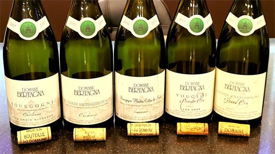Стили вин из Шардоне